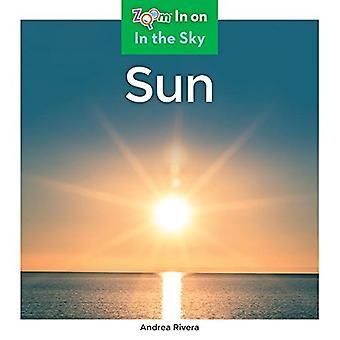 Sun by Andrea Rivera - 9781680799354 Book