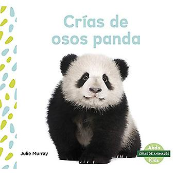 Crias de osos panda (Panda Cubs) by Julie Murray - 9781644941287 Book