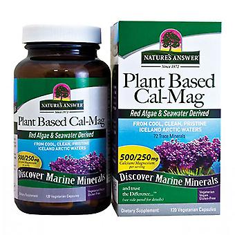 Nature's Answer Plant Based Cal-Mag, 120 Kapseln