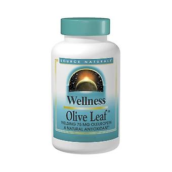Source Naturals Wellness Olive Leaf, 30 Tabs