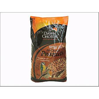 Dawn Chorus Best Peanuts 2kg 50909
