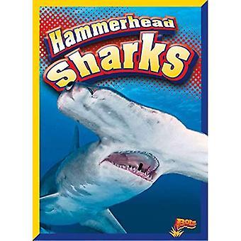 Hammerhead žraloky