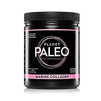 Planet Paleo Marine Collagen 450g (PP0012)