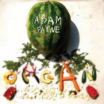 Adam Payne - Organ [CD] USA import