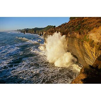 Swells at high tide against sandstone cliffs Tongaporutu New Zealand Poster Print by Harley Betts