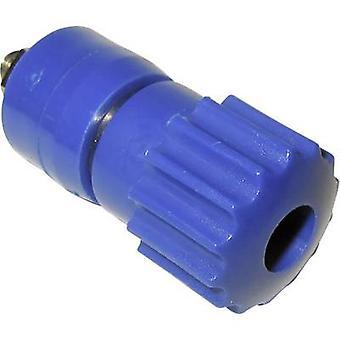 Pole terminal blauw 16 A Schnepp 1 PC('s)
