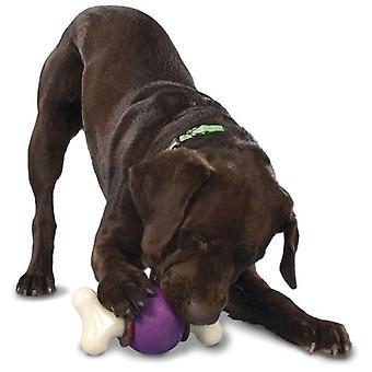 Petsafe Busy Buddy Bouncy Bone (Dogs , Toys & Sport , Intelligence & Interactive Toys)