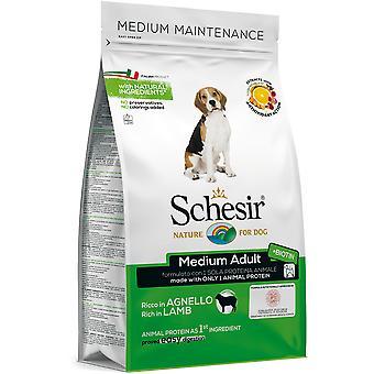 Schesir Pienso para Perros de Razas Medianas con Cordero (Dogs , Dog Food , Dry Food)