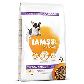 IAMS Puppy and Junior Pro Active Medium Breed Rich Chicken (Dogs , Dog Food , Dry Food)