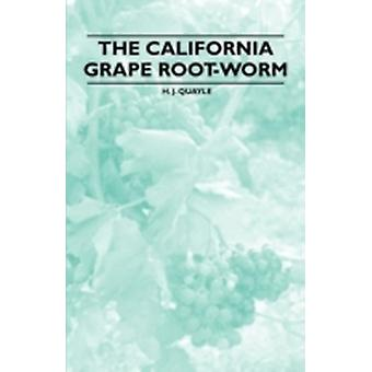 The California Grape RootWorm by Quayle & H. J.