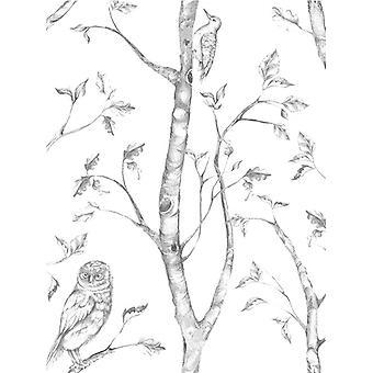 NuWallpaper Woods Peel en stick behang grijs Fine decor NU1412 5.5 m