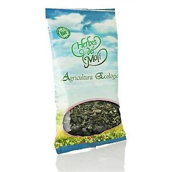 Herbes del Molí Anis Green Eco Seeds
