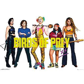 Birds of Prey Poster Group  Birds of Prey: The Emancipation of Harley Quinn