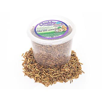 3 litre chubby dried mixes (mealworms & calci worms)