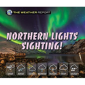Northern Lights Sighting! by Joanne Randolph - 9780766090231 Book