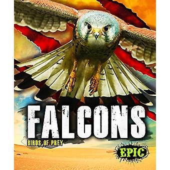 Falcons by Nathan Sommer - 9781626178793 Book