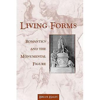 Woonkamers vormen: Romantici en de monumentale figuur (SUNY serie, Studies in de lange negentiende eeuw)