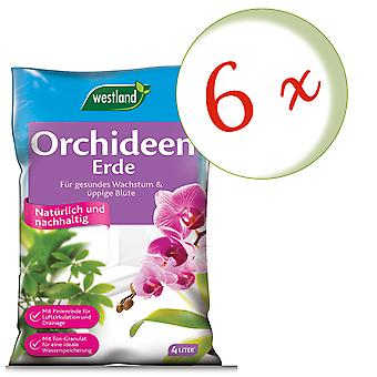 Sparset: 6 x WESTLAND® orkideamaa, 4 litraa
