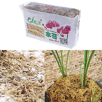 Sphagnum Dry Moss Garden Moisturizing Nutrition Organic Fertilizers For Orchid