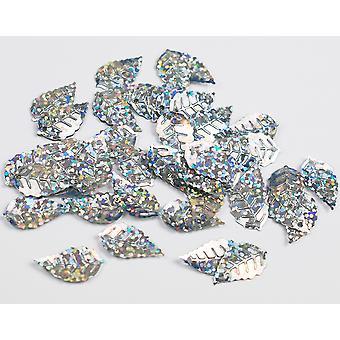 LAST FEW - Paillettes holographiques à feuille d'argent 2.5g avec trous pour épingles