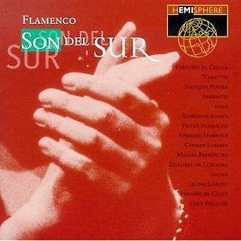 Hemisphere Artists - Flamenco-Son Del Sur [CD] USA import