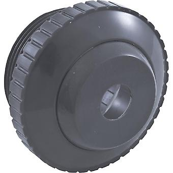 "Pentair 540016 1.5"" MPT and 0.5"" Orifice Inlet Fitting - Dark Gray"