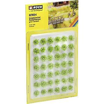 NOCH 07034 Tuft da vegetação do prado da grama 6 o verde (tratado)