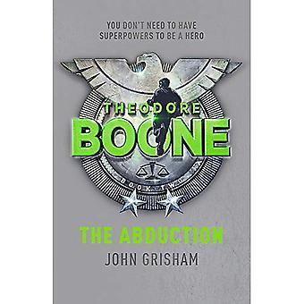 Theodore Boone: Bortförande