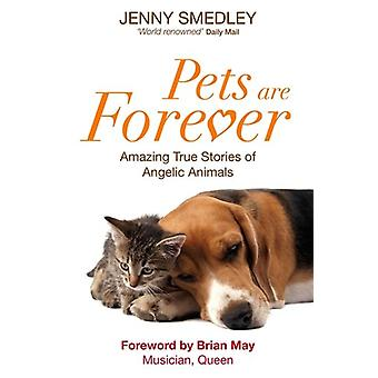 Animais de estimação são forever 9781848502901