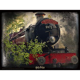 Harry Potter 3D Image Puzzle 500pc Hogwarts Express