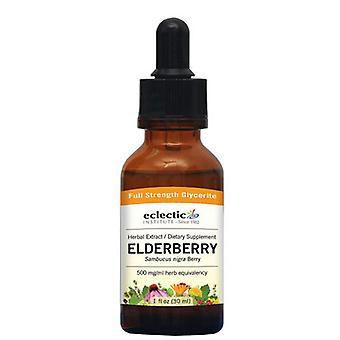 Eclectic Institute Inc Elderberry, 1 Oz Alcol gratis