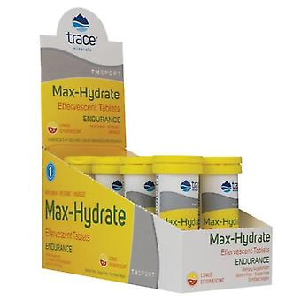 Trace Minerals Max Hydrate Endurance Effervescent Tablets
