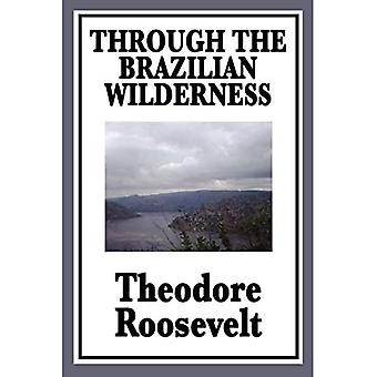 Through the Brazilian Wilderness: Or My Voyage Along the River of Doubt