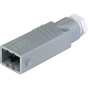 Hirschmann 931 692-106-1 Conector de rede STAS Plug, número total reto de pinos: 5 + PE 6 A Grey 1 pc(s)