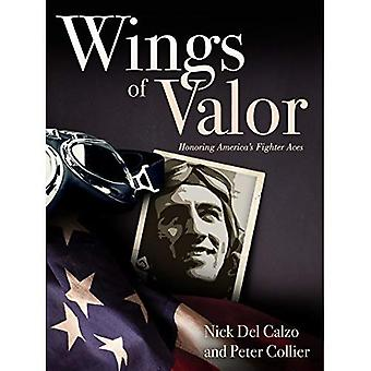 Wings of Valor: ære America's Fighter esser