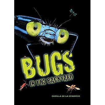 Bugs in de achtertuin
