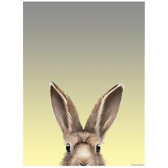 Inquisitive Creatures Alert As A Hare Mini Poster