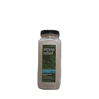 Bad & Körper Arbeiten Aromatherapie Stress Relief Eukalyptus Spearmint Luxus Bad 15 fl oz / 445 ml (Packung mit 2)