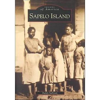 Sapelo Island by Buddy Sullivan - 9780738505954 Book