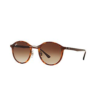 Ray-Ban Light Ray RB4242 6201/13 Light Havana/Brown Gradient Sunglasses