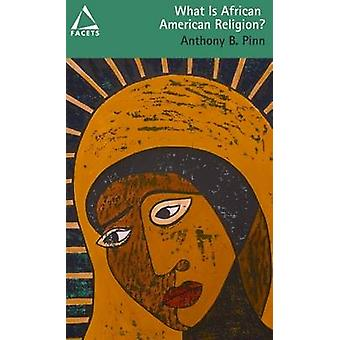 What Is African American Religion Facets series by Pinn & Anthony B.