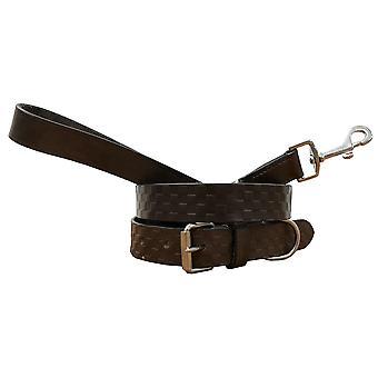 Bradley crompton genuine leather matching pair dog collar and lead set cdkupb211