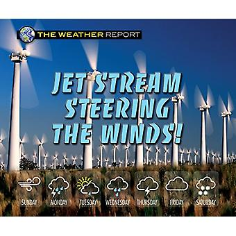 Jet Stream Steering the Winds! by Joanne Randolph - 9780766090194 Book