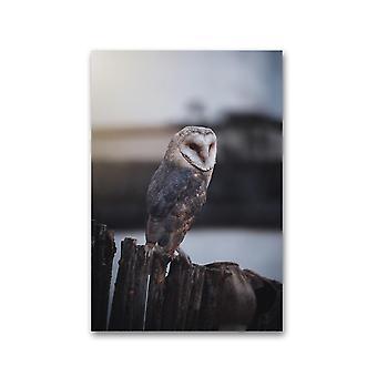 Pöllö istuu puinen aita juliste -Kuva Shutterstock