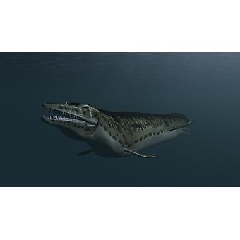 Mosasaur swimming in prehistoric waters Poster Print