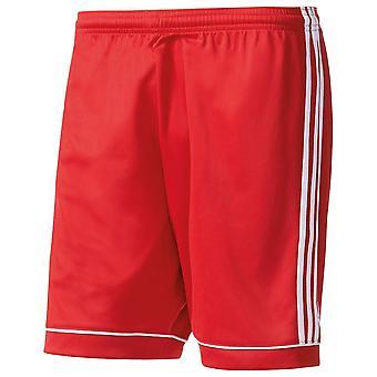 Adidas Squadra curta 17 crianças BJ9226 futebol todas as calças de homens do ano
