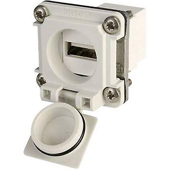 USB-flange set optie 6 Connector, mount J00020A0480 licht grijs Telegärtner J00020A0480 1 PC('s)