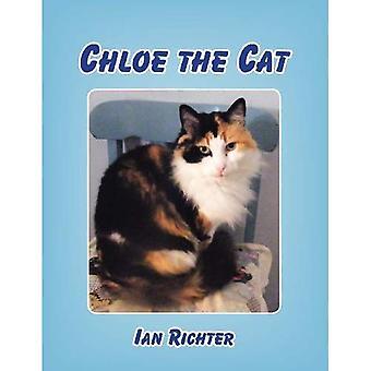 Chloe il gatto