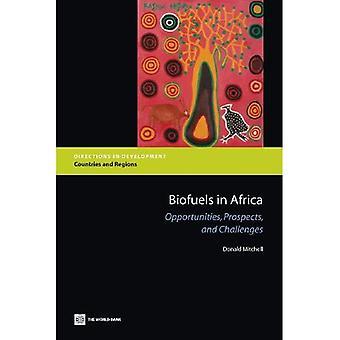 Biokraftstoffe in Afrika: Chancen, Perspektiven und Herausforderungen