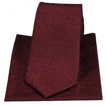 David Van Hagen Tonal Paisley Silk Tie and Pocket Square Set - Wine Red